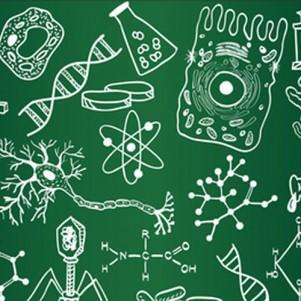 Курсы «Биология»