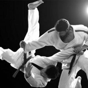 Individual class in martial arts