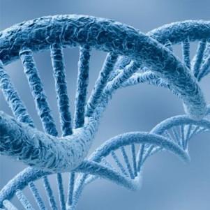 Семинар «Организация учебного процесса по дисциплине Молекулярная биология» для студентов 2 курса ФБиЭ, дн.ф.о.