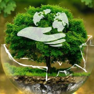 """XVI Международная научно-практическая конференция """"Актуальные проблемы экологии - 2021"""""""