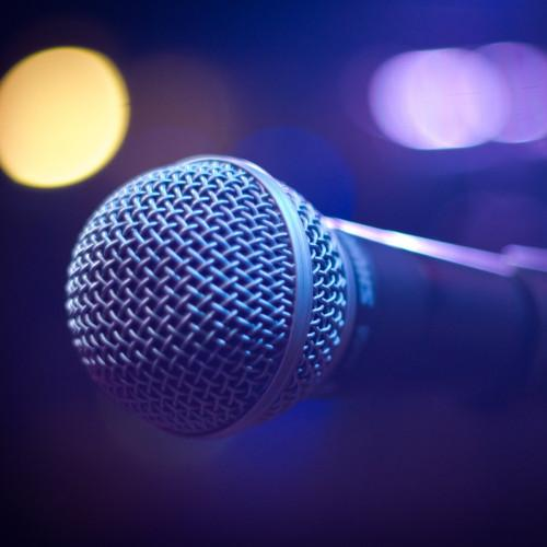 """Individual vocal lessons in the """"World of young stars"""" studio"""