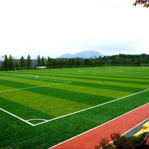 Мини-футбол  на искусственном поле для детей до 14 лет