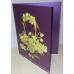 Поздравительные открытки